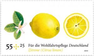 WOM_zitrone1-300x180